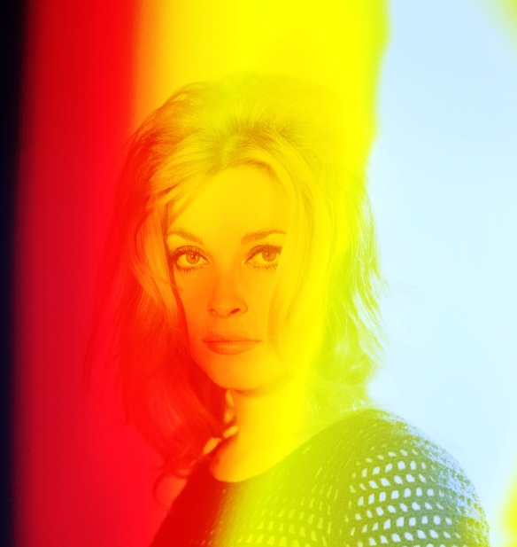 Sharon Tate Dreams
