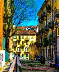 Portrait: Torino Alley