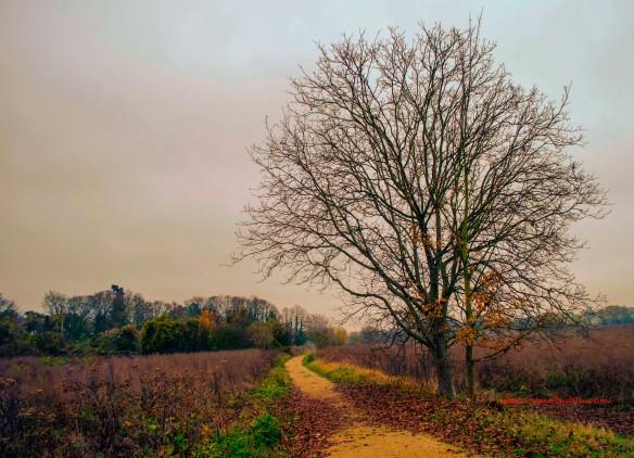 Etiolles, France