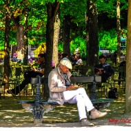 Les Lecteurs Au Jardin De Luxembourg, Paris, France