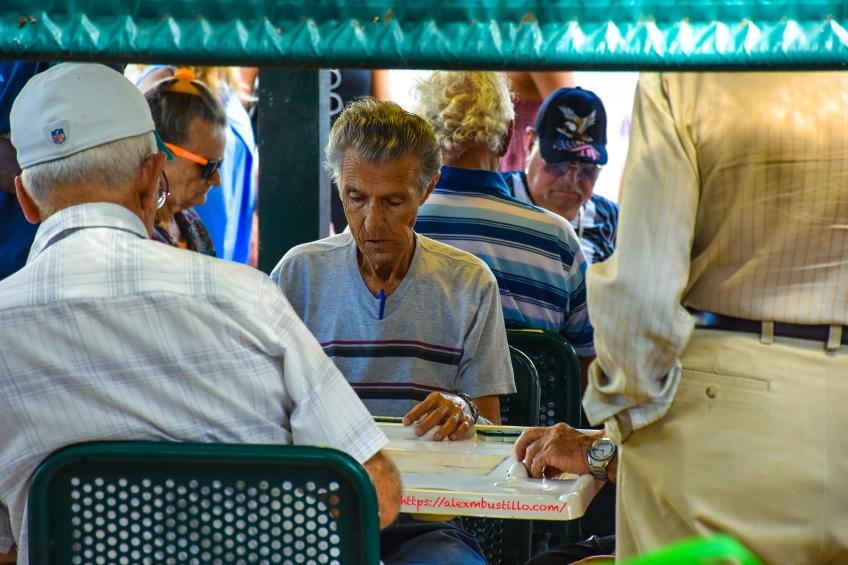Little Havana Portrait - Domino Park Duel