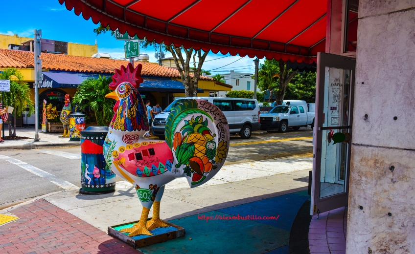 Little Havana Portrait - Little Havana Visitor Center Rooster
