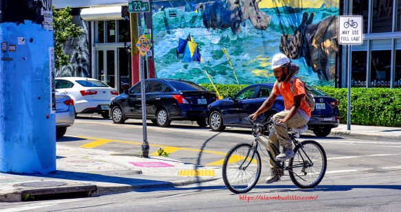 Wynwood, Miami, Florida - Biking In Wynwood Portrait