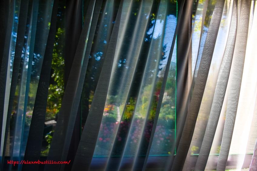 Garden View, Window, Chez Claude Monet, Giverny, France