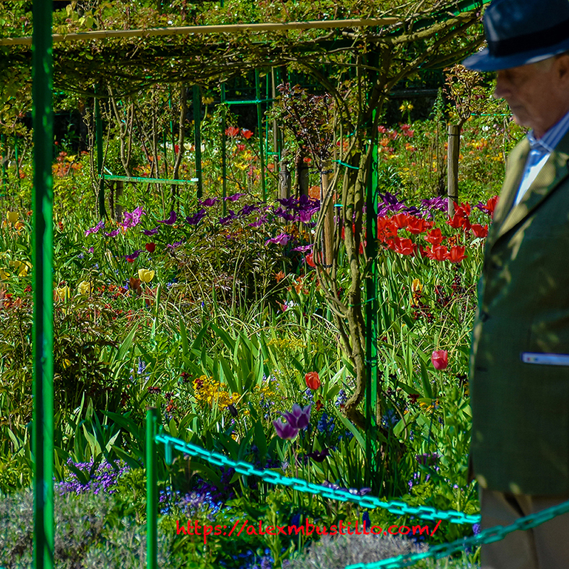 Nowhere Man, Residence Claude Monet, Giverny, France
