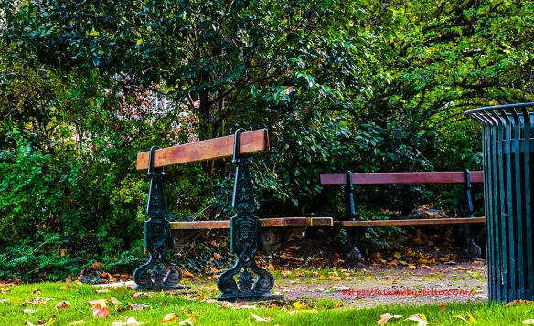 Park Bench, Épernay, France