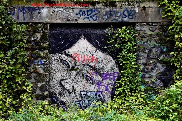 Graffiti Ivy Walls, Porte de Versailles, Paris