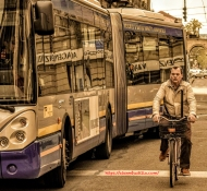 Torino Bike & Bus