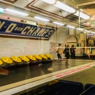 Notre-Dame des Champs Paris Metro