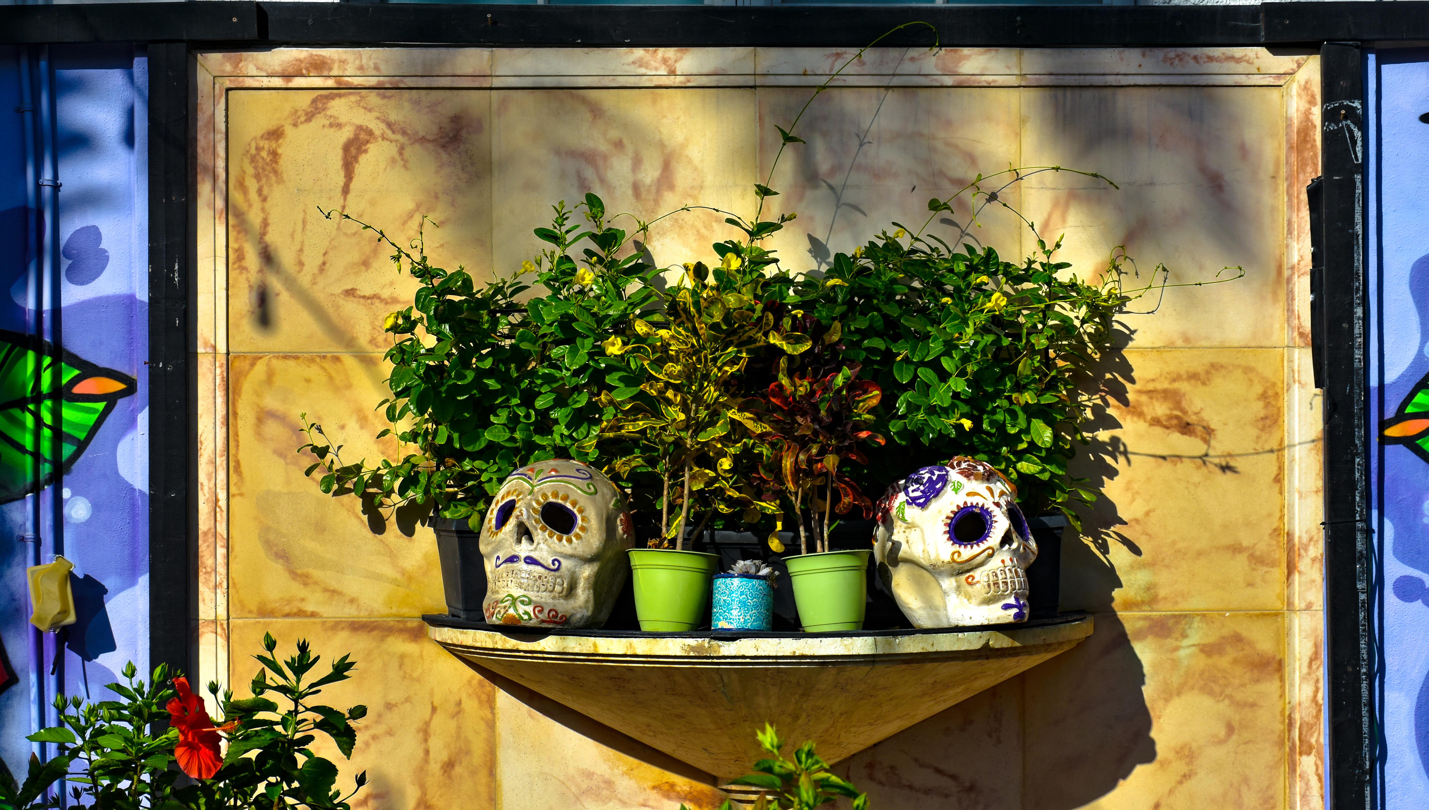 El Dia de los Muertos, South Beach, Miami, Florida